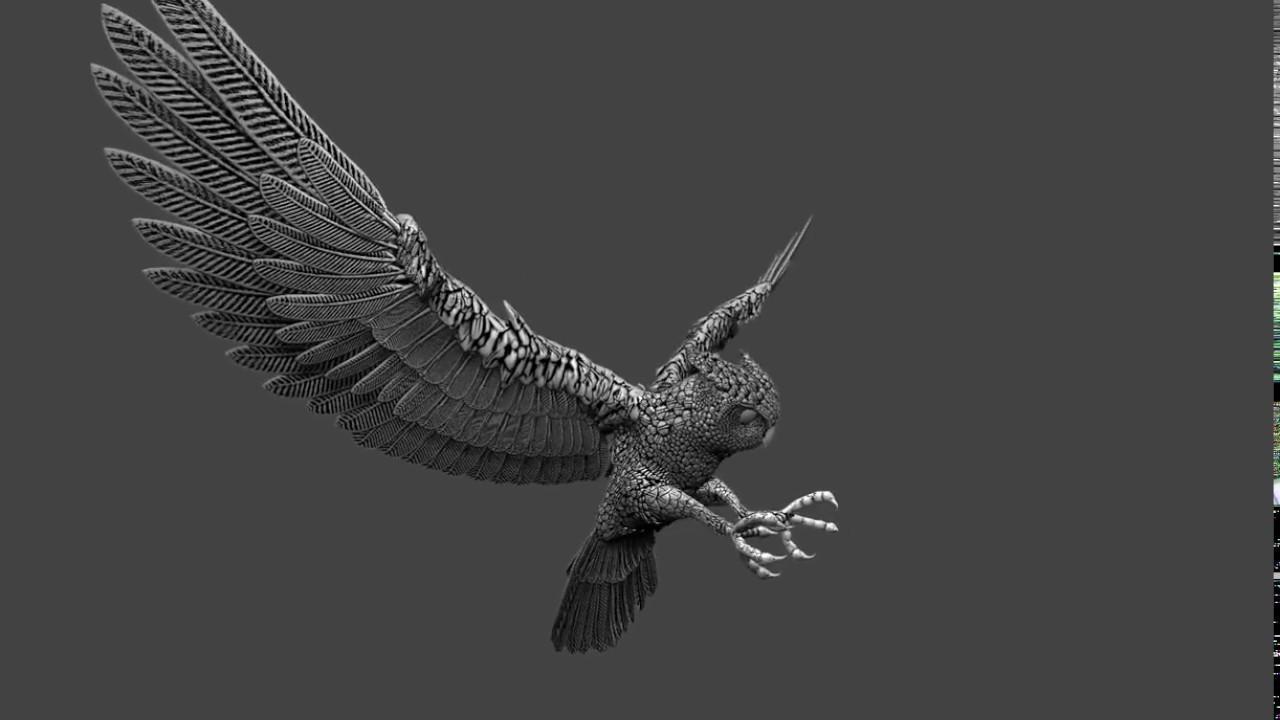Owl_20280
